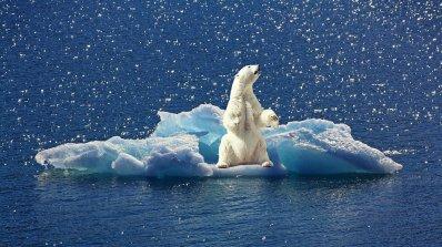 Отбелязваме Световния ден на климата