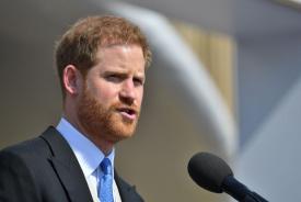 Проучвания разкриват защо червенокосите мъже като принц Хари са по-добри любовници
