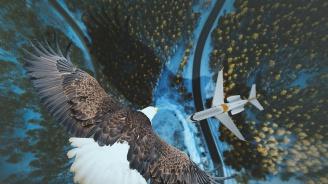 Германски летища използват животни, за да намалят сблъсъците между самолети и птици