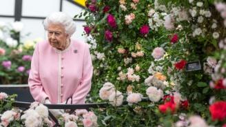 Елизабет II награди бивша новозеландска проститутка