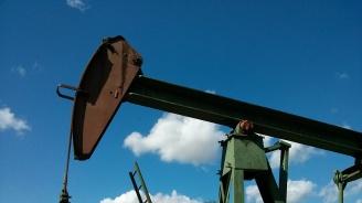 Петролът може да поевтинее с 6-7%
