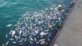 Рекордно ниво на микропластмаса има в Средиземно море