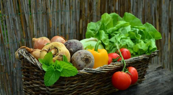 Зеленчуците ще намалеят заради глобалното затопляне