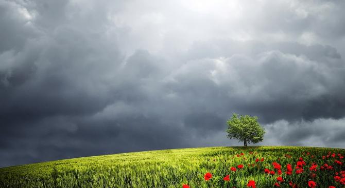 През следващите дни от седмицата – без сряда, дъждовете ще
