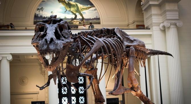 Тиранозавър рекс не можел да изплези език
