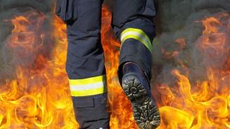 Мъж запали къщата си, опитвайки да се отърве от змия