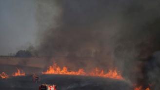 Пожар горя в житен масив край Пловдив (обновена)