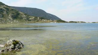 Започна почистването на Рибното езеро