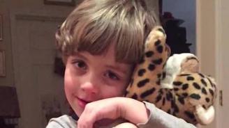 Полицаи възстановиха изгубената играчка на малчуган (видео)