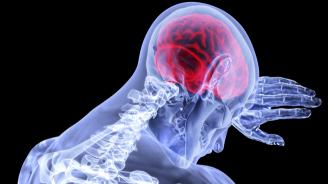 Вируси може да създават условия за появата на болестта на Алцхаймер
