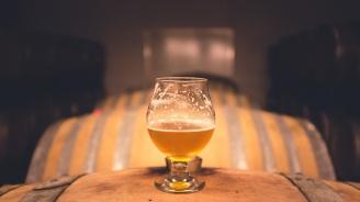 Шведски археолози откриха бира на 15 века