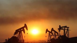 Увеличават световното производство на петрол с 1 млн. барела на ден