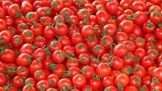 Камион с домати катастрофира в Кресненското дефиле
