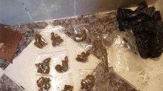 Закопчаха наркодилър и авера му в Пазарджишко (снимка)