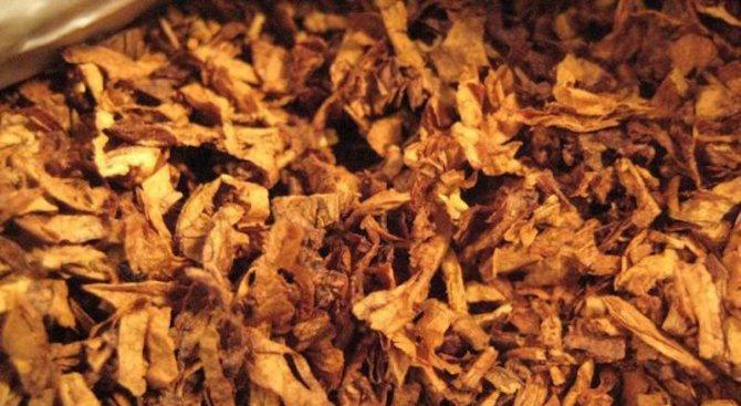 Спипаха двама с над 25 кг контрабанден тютюн