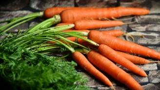 Морковите - повелителите на лятото