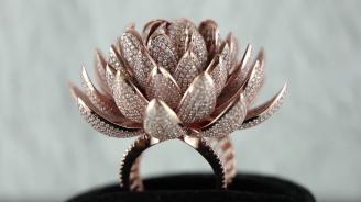 Индийци поставиха световен рекорд за най-много диаманти върху пръстен (видео)