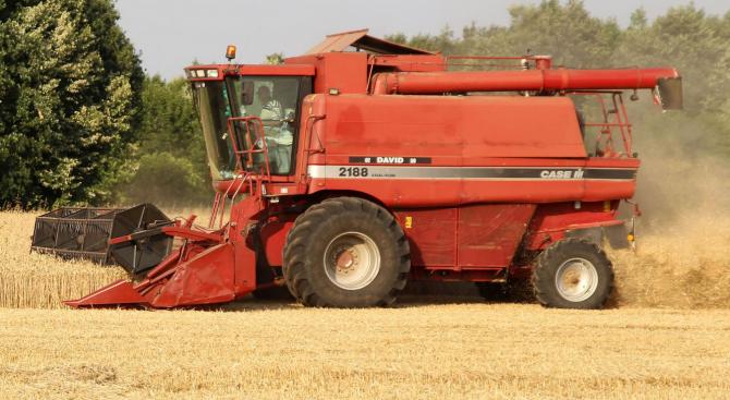Жътвата на пшеница в Русенско се очаква да приключи до