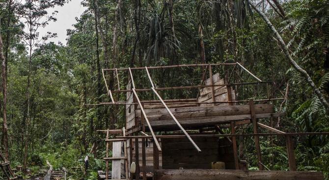 Намериха мъж от избито преди години бразилско племе (видео)