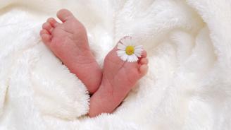 Бебетата, заченати през зимата, са с по-малък шанс от затлъстяване