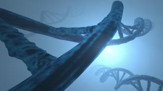 Редактирането на гени предизвиква генни мутации
