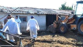 Откриха вторично огнище на чумата в България