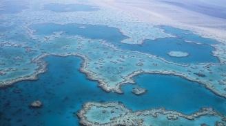 Изсветляване на облаци може да спаси Големия бариерен риф