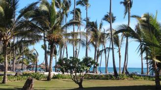 Тонове боклуци съсипаха райските плажове в Доминикана