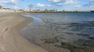 Тялото на мъж изплува в района на бургаското пристанище