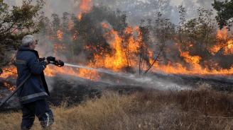 Осем съвета как да се предпазим от пожар през лятото