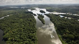 Откриха следи от древна цивилизация в Амазония