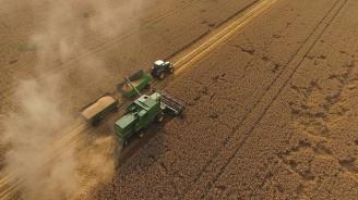 С по-лош добив от миналогодишния приключи жътвата на пшеница в Ловешка област