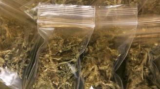 Четирима остават в ареста за притежание на голямо количество дрога