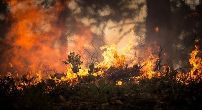 Около 500 души на гръцкия остров Евбея, където вчера избухнаха