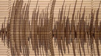 Силно земетресение разтресе Аляска