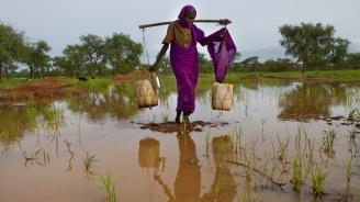 Наводнения в Судан взеха десетки жертви