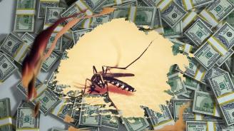 Комарите не изпитват съчувствие към животното, от което пият кръв (Част I)