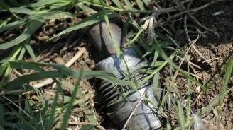Откриха снаряд в пловдивско училище