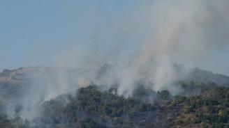 Умишлен палеж е предизвикал пожара над Карлово, смятат лесничеи