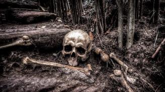 Човешки останки откриха в къща в Козлодуй