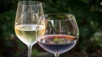 Няма безопасно количество алкохол, твърдят учени