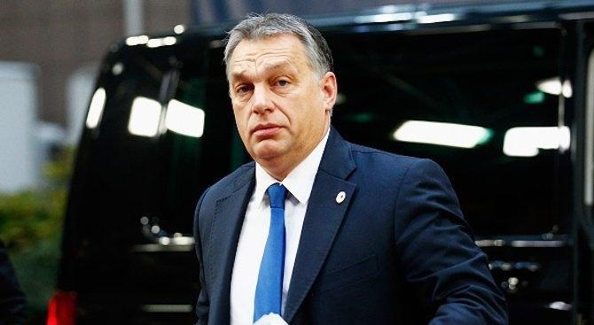 """Матео Салвини е """"моят герой"""", каза днес унгарският премиер Виктор"""