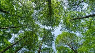 Отново ще броят природата в частни имоти за 17 млн. лв. с ДДС