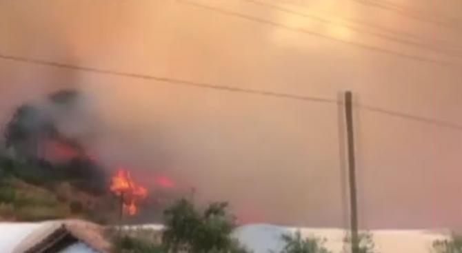 Голям горски пожар избухна в близост до Анталия. В ход