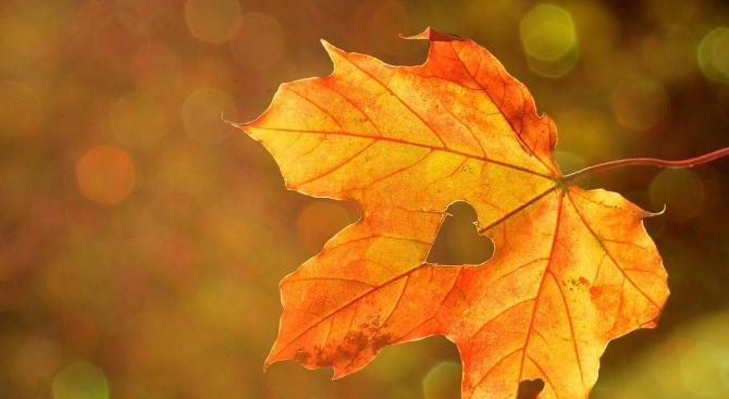 Астрономическата есен настъпи у нас в 04.54 часа българско време