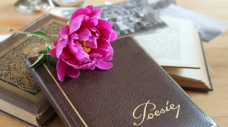 Джубокс за поезия ще бъде поставен в Русе
