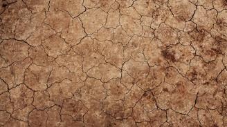 Засушаването в Добричкия регион затруднява обработката за есенната сеитба
