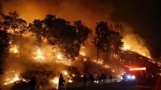 Автомобил причинил опустошителния горски пожар в Калифорния това лято