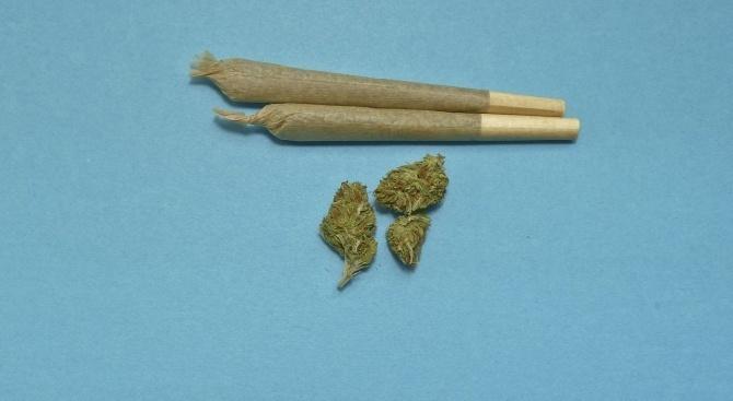 С 9 грама марихуана е засечен малолетен пловдивчанин.Това съобщиха от
