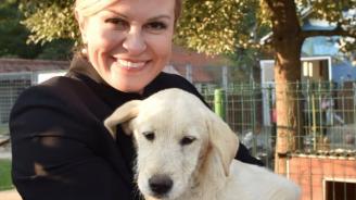 Хърватският президент осинови куче от приют